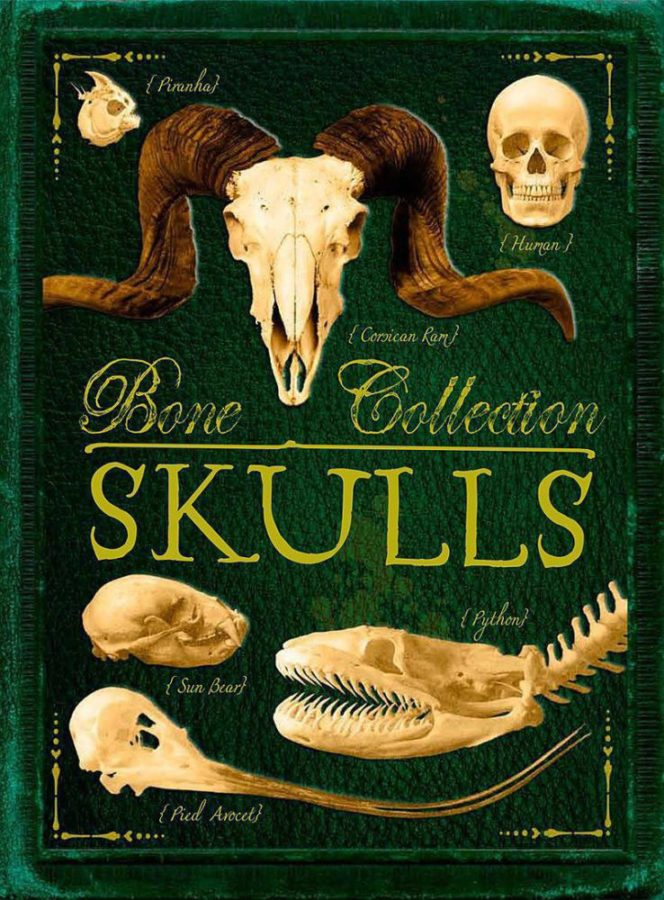 Camilla de la Bédoyère - Bone Collection: Skulls