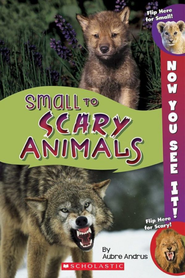 Aubre Andrus - Now You See It! Small to Scary Animals