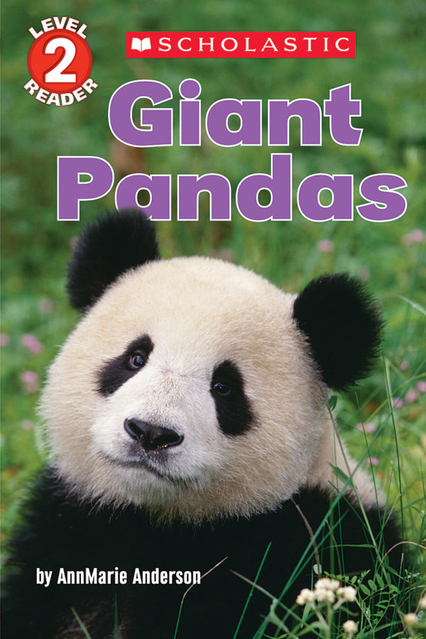 AnnMarie Anderson - Giant Pandas