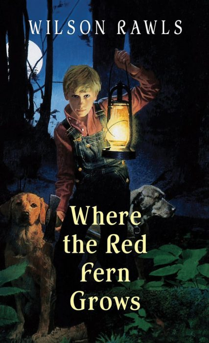 Image result for wilson rawls where the red fern grows