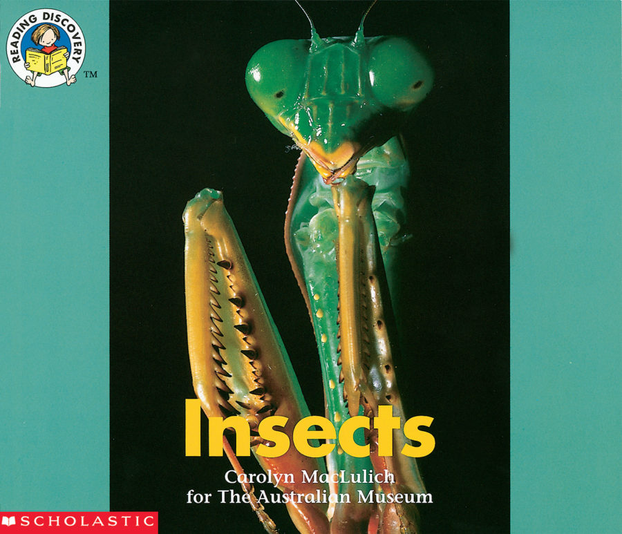 Carolyn MacLulich - Insects
