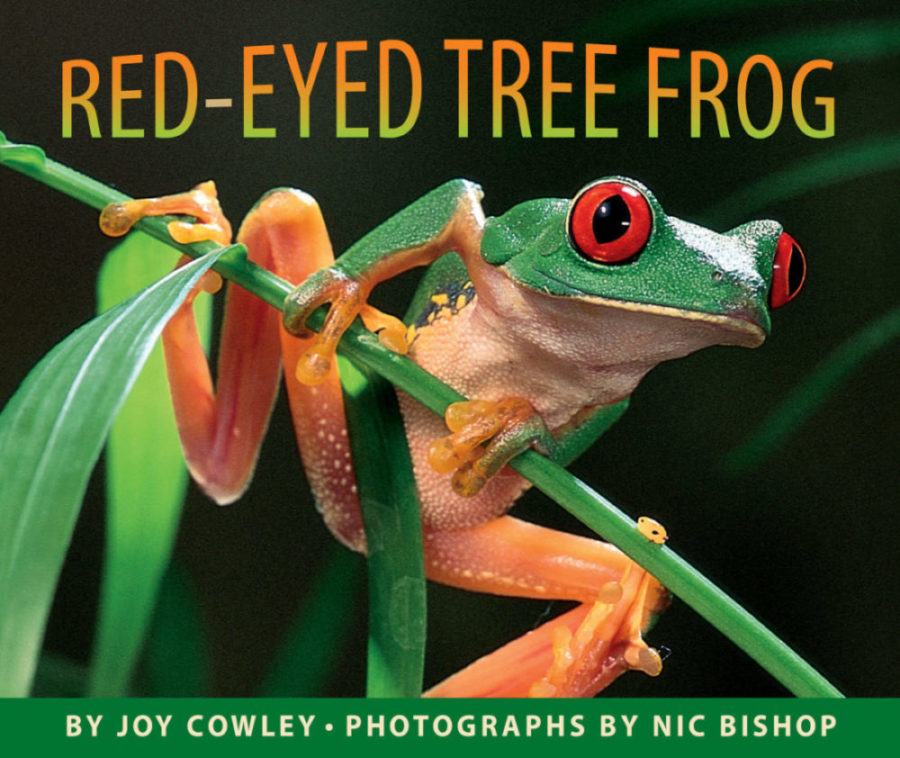 Joy Cowley - Red-Eyed Tree Frog