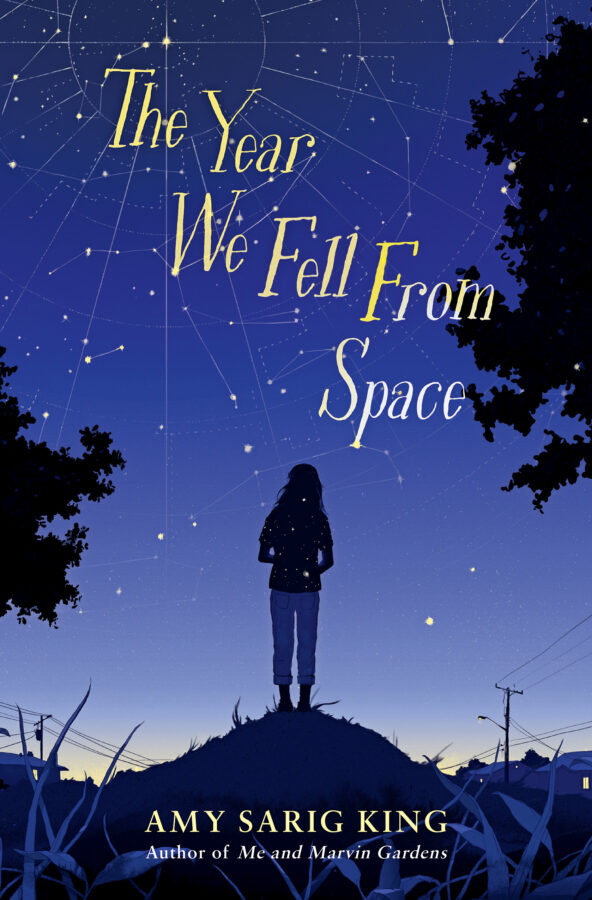 Amy Sarig King - Year We Fell From Space, The