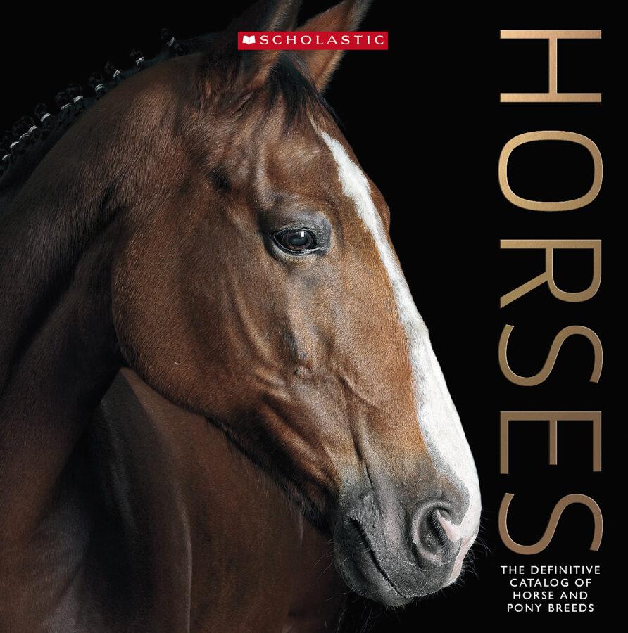 Scholastic - Horses