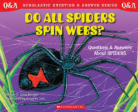 Scholastic Q & A: Do All Spiders Spin Webs?