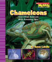Chameleons and Other Animals With Amazing Skin