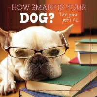 How Smart is Your Dog?