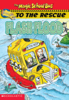 MSB to the Rescue: Flood