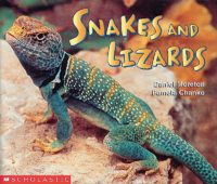 Snakes and Lizards (SCIENCE EMERGENT READER)