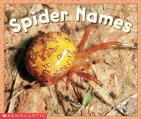 SPIDER NAMES (SCIENCE EMERGENT READER)