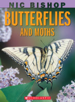 Nic Bishop Butterflies and Moths