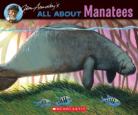 All About Manatees