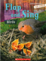 Flap and Sing: Birds