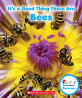 It's a Good Thing There Are Bees