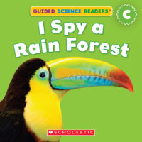 I Spy a Rain Forest