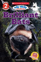 Icky Sticky: Brilliant Bats